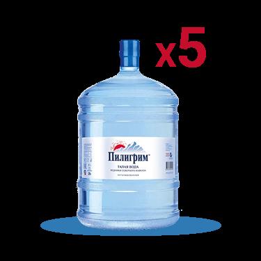 Вода «Пилигрим» питьевая негазированная 5шт*19л